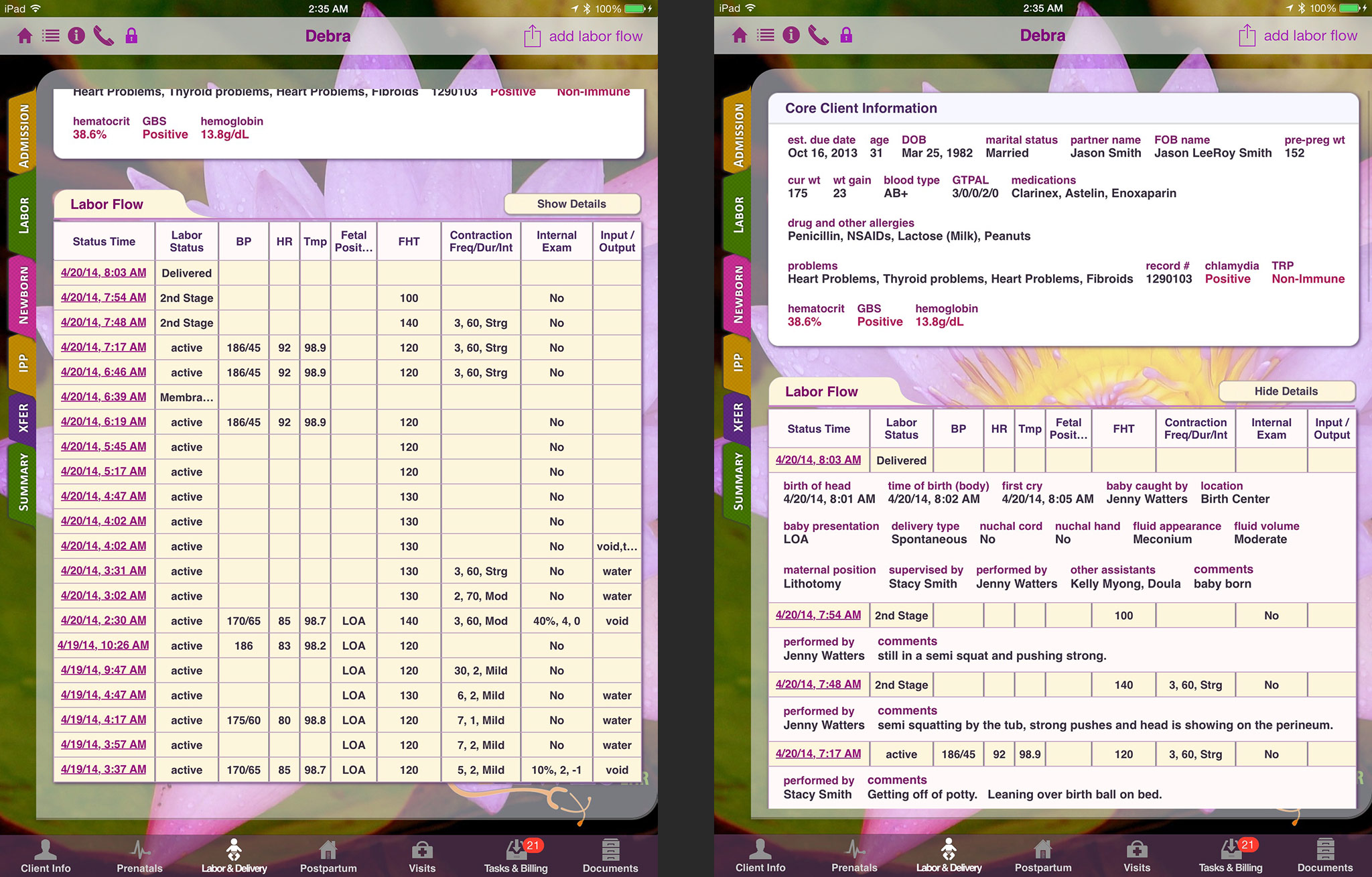 Overview, Mobile Midwife EHR app for the iPad - electronic