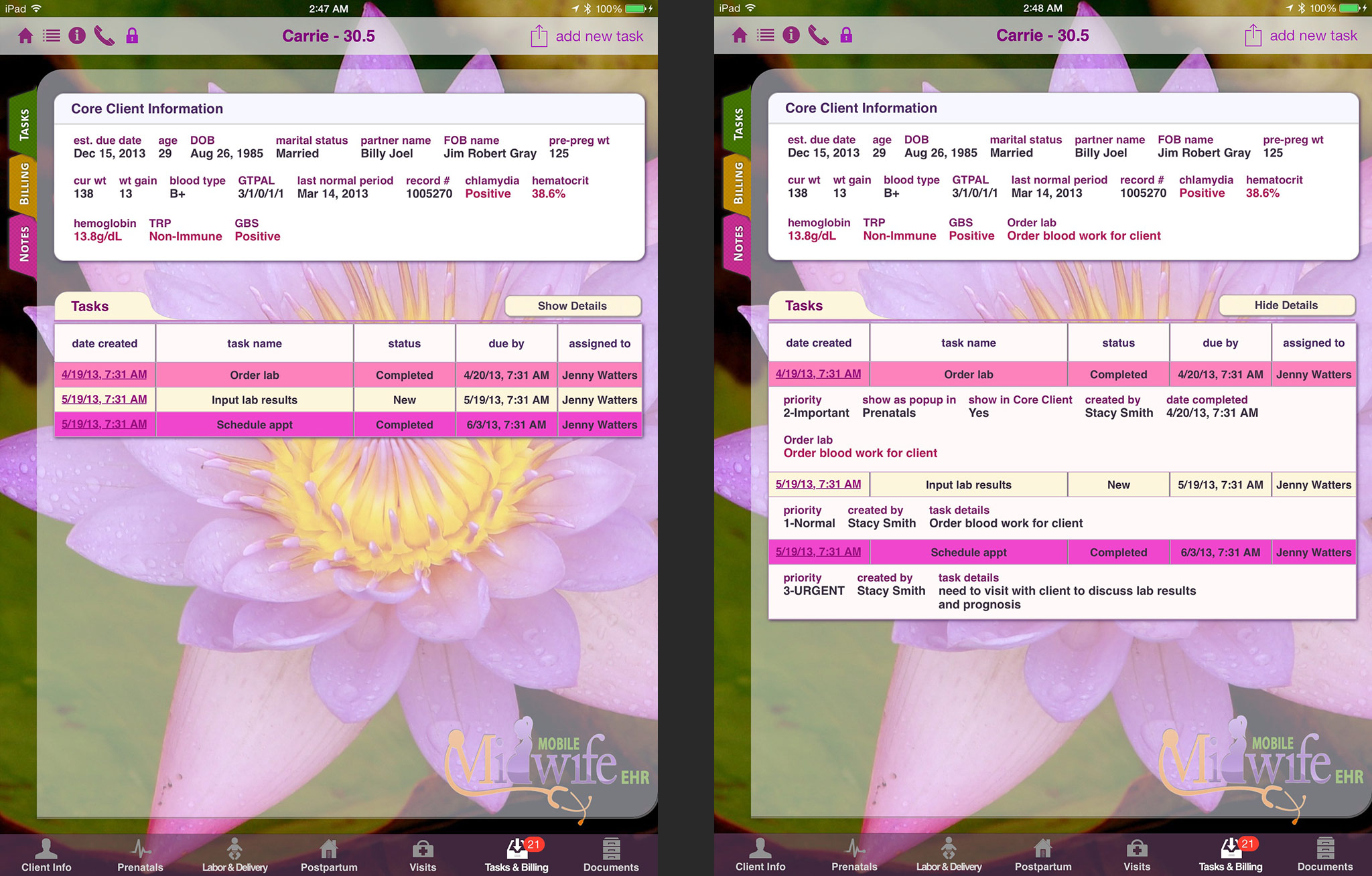 Overview Mobile Midwife Ehr App For The Ipad Electronic Charting